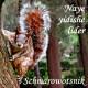 """""""Naye yidishe lider""""  – Die neue CD von Schmarowotsnik"""